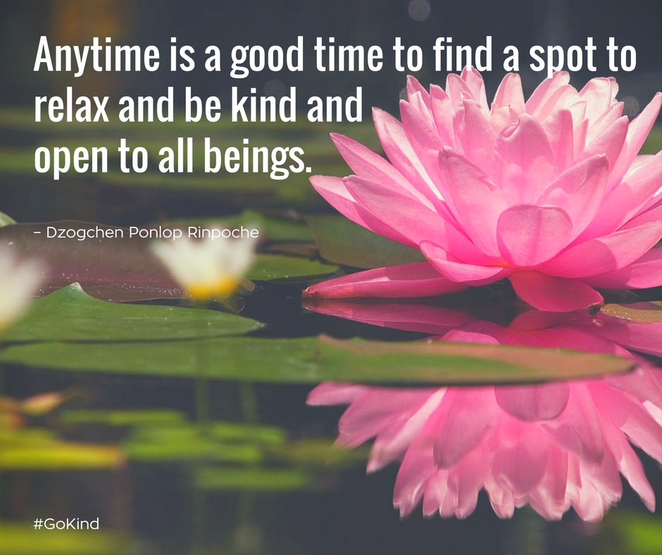 quote_Anytime is a good time to find a spot to relax and be kind and open to all beings.