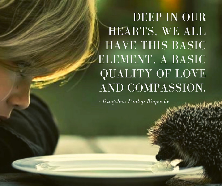 quote_Deep in our hearts we all have this basic_love and compassion