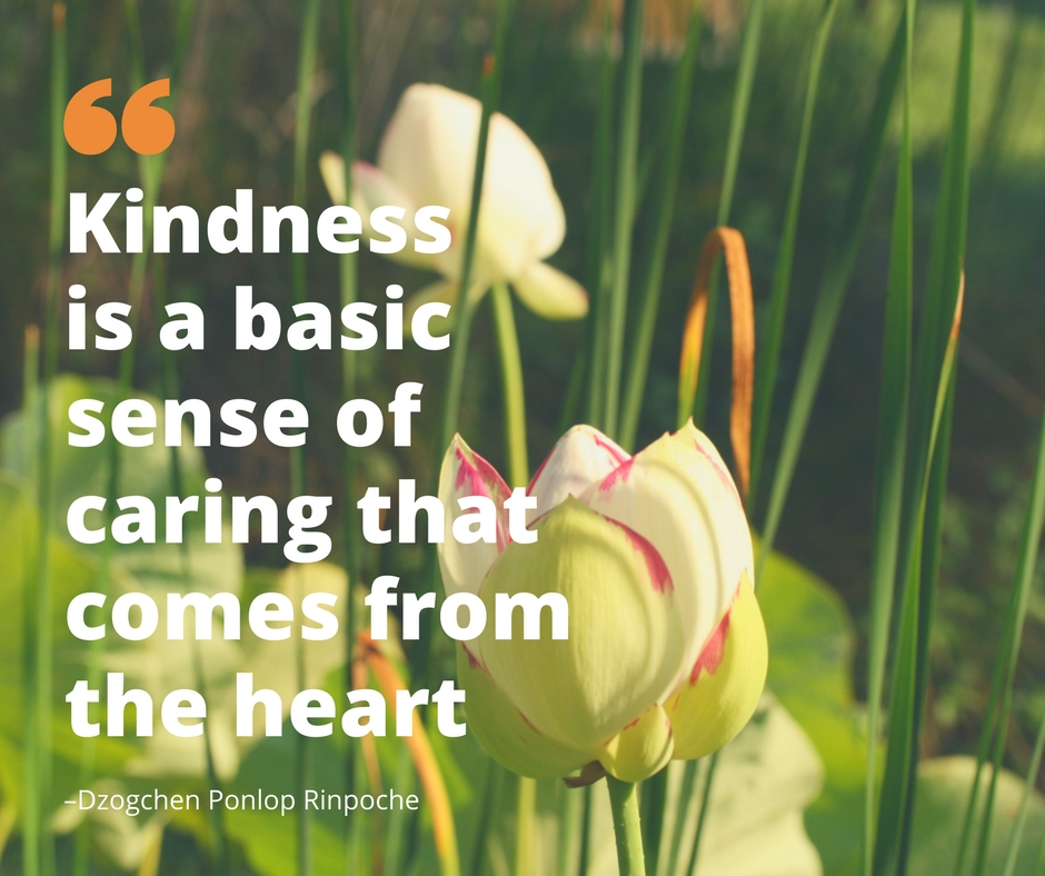quote_kindness is a basic sense of caring that comes from the heart.