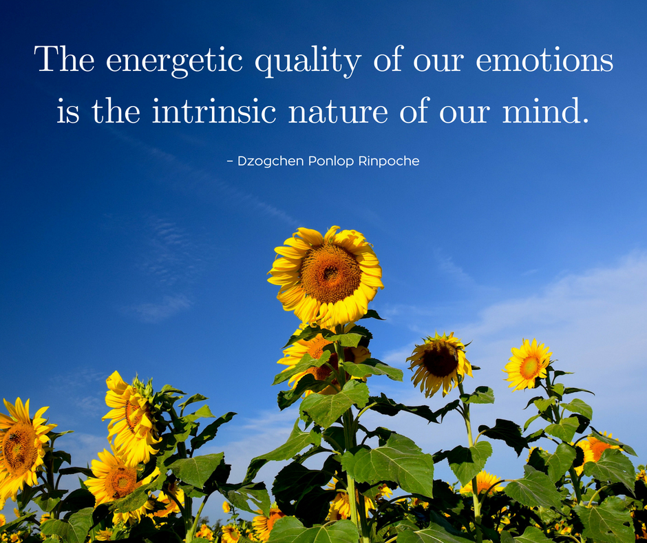 quote_The energetic quality of emotion . . .